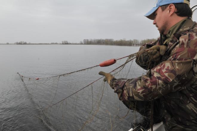 Навремя нереста вПермском крае введён запрет наловлю рыбы